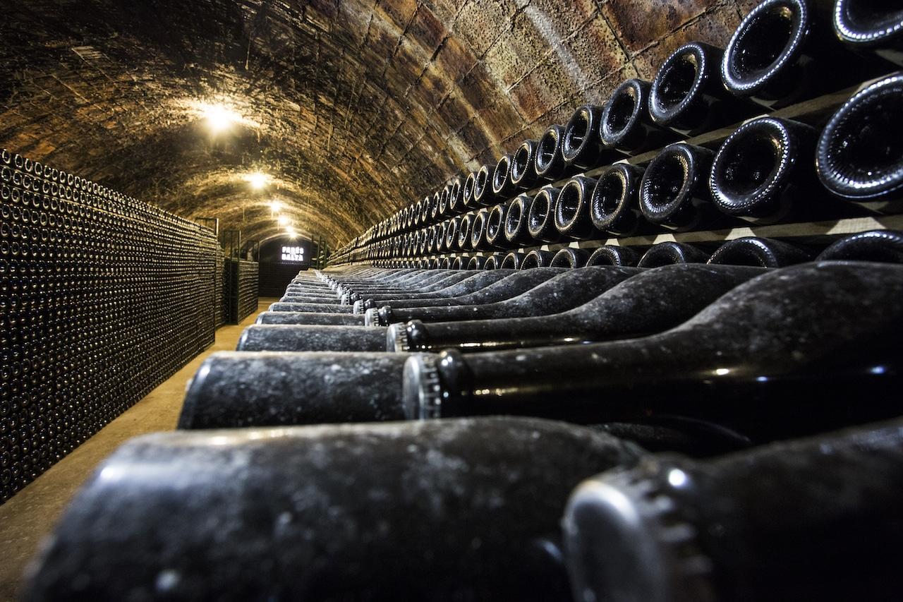 Cuál es la ruta del vino en Chile